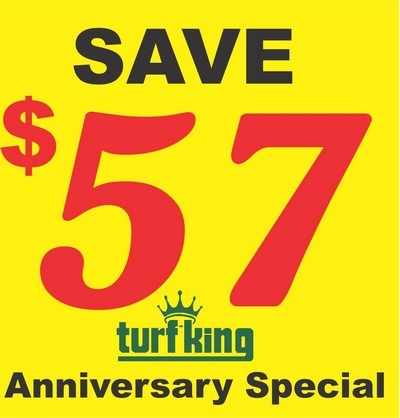 Anniversary Savings Special
